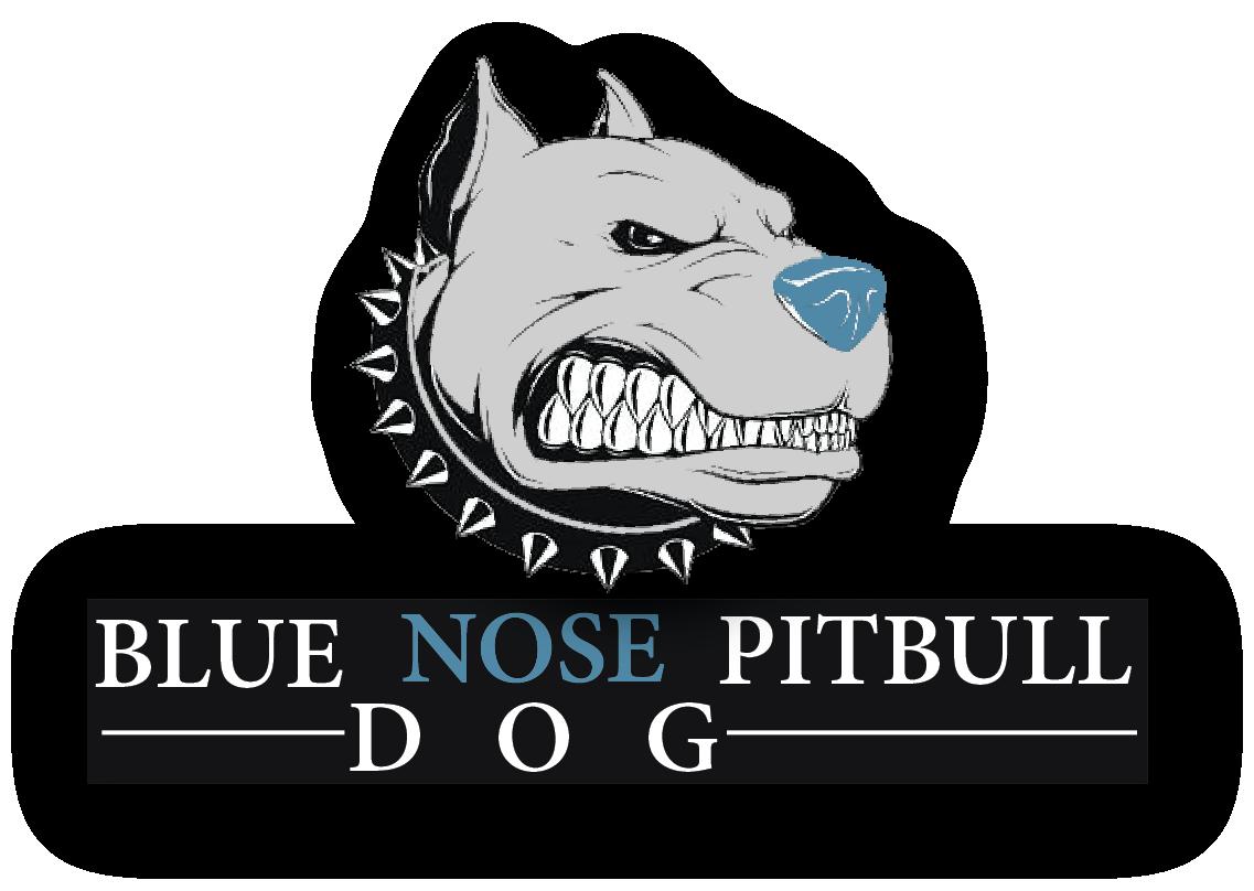 Blue Nose Pitbull Dog Logo